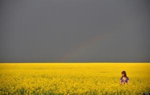 Gathering flowers in gathering storm-resized 700